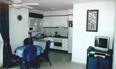 apartment dining/kitchen